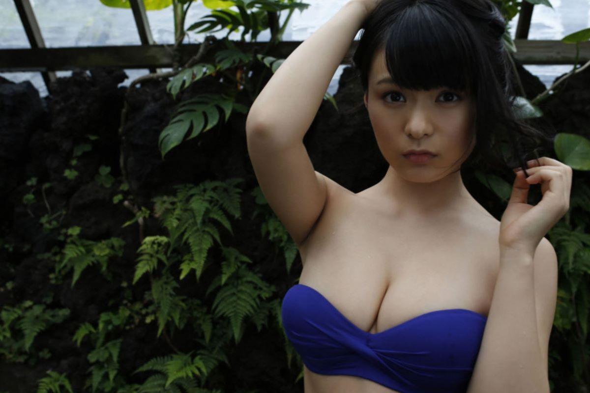 しっとりセクシーな星名美津紀の水着画像 109