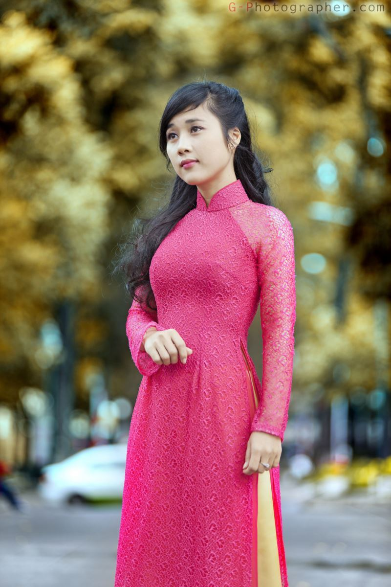 ベトナム民族衣装アオザイ画像 5