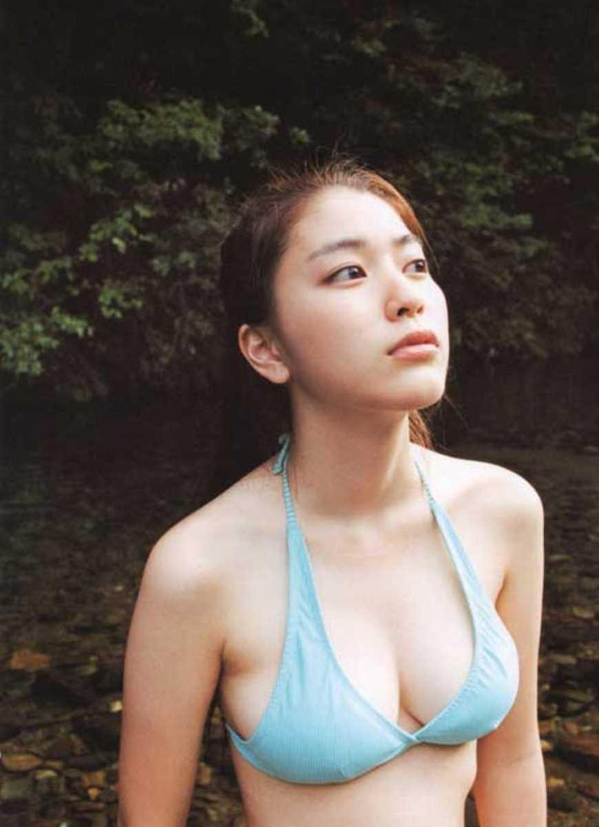 水着姿の芸能人エロ画像 99