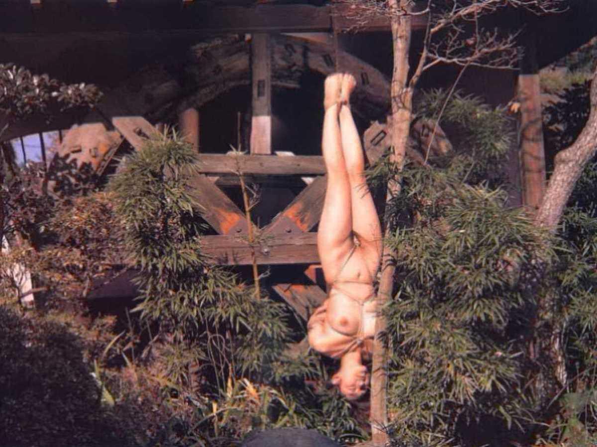 野外の緊縛調教 エロ画像 96