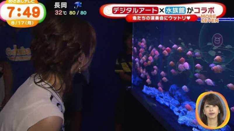 テレビの透け下着エロ画像 104