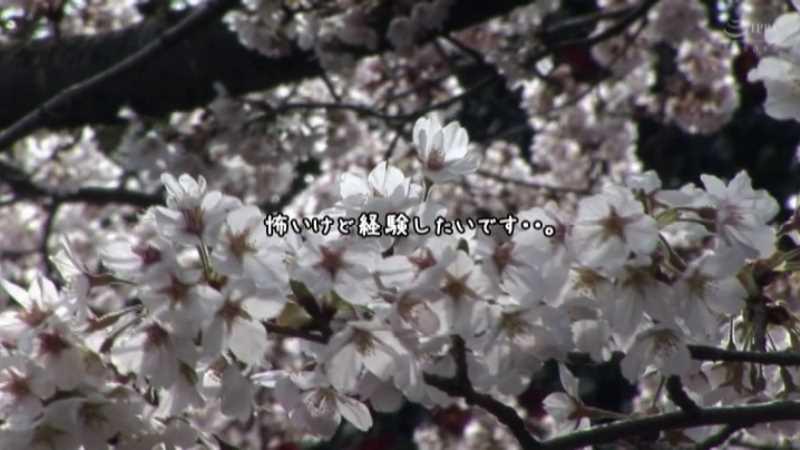 処女のバレー女子 宮原友香 エロ画像 38